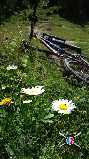 Bikebergsteigen im Inntal