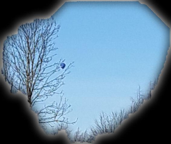 Kappale taivasta, jolle vielä lehdettömän puun takana, kaukana, näkyy kohoava kuumailpallo.