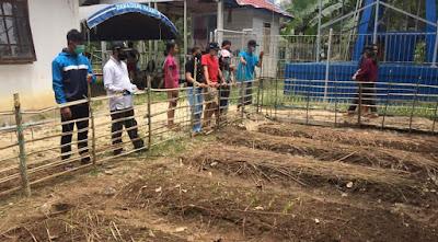 Pemanfaatan lahan pekarangan untuk ketahanan pangan salah satu inovasi dalam menjaga krisis pangan ekonomi keluarga.