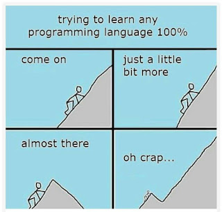 trying to learn a programming language meme