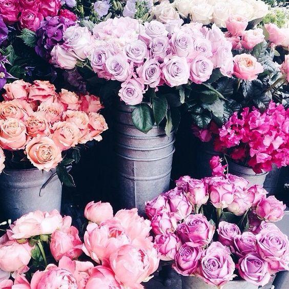 Flower Roses Pinterest: Weekend Favorites : 26 Images Flowers Instagram