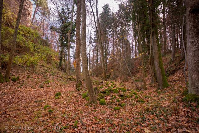 Un profond fossé isole le château de la montagne