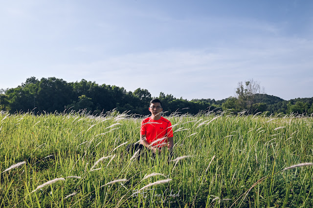 Self portrait with the Cogon Grass at Puchong Lalang - Photo taken with Nikon D780