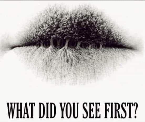 Apa Yang Pertama Kali Kamu Lihat