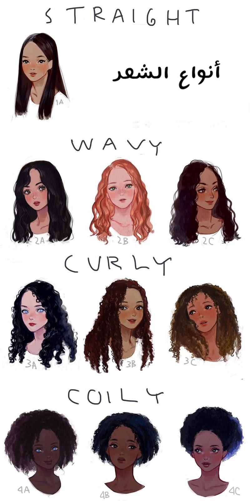 بيوتي كيرلي أنواع الشعر Hair Types