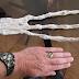 Main alien géante momifié découverte au Pérou