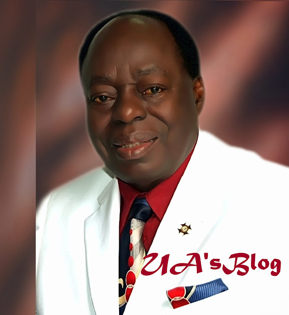 DSS Not Empowered By Law To Arrest, Says Babalola SAN