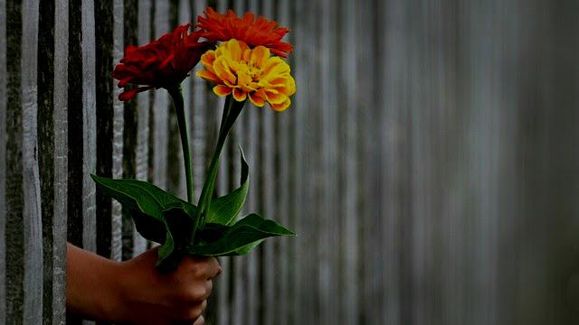 Kata Kata Cinta Romantis Singkat Bikin Baper Pasangan