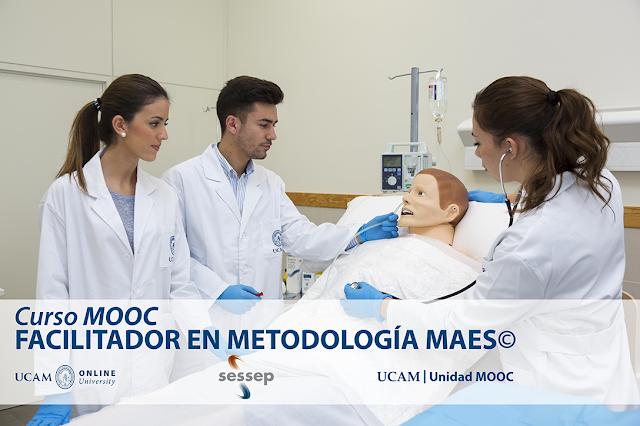 Facilitador en Metodología MAES©
