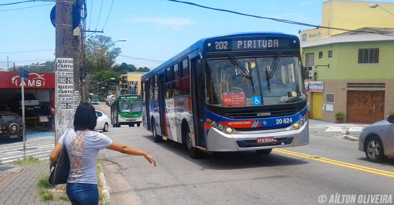 Ônibus da EMTU, 202 Pirituba