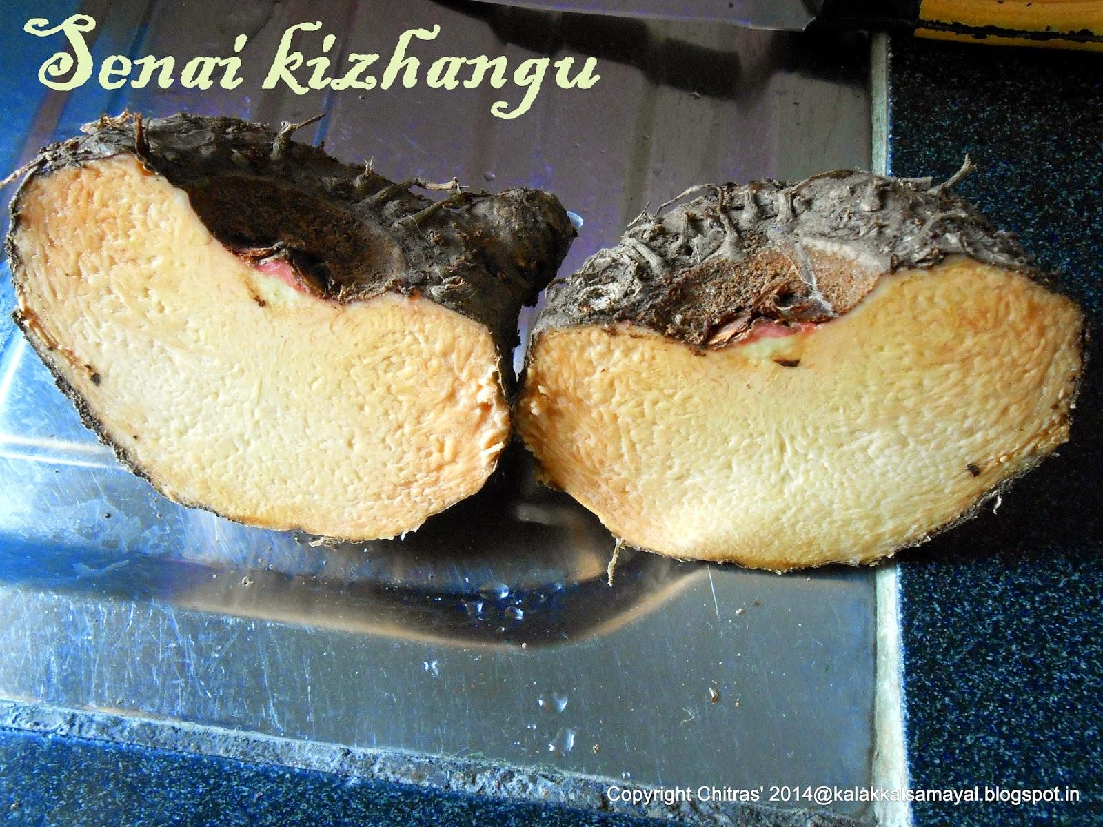 Senai Kizhangu [ Yam or Elephant Yam ]