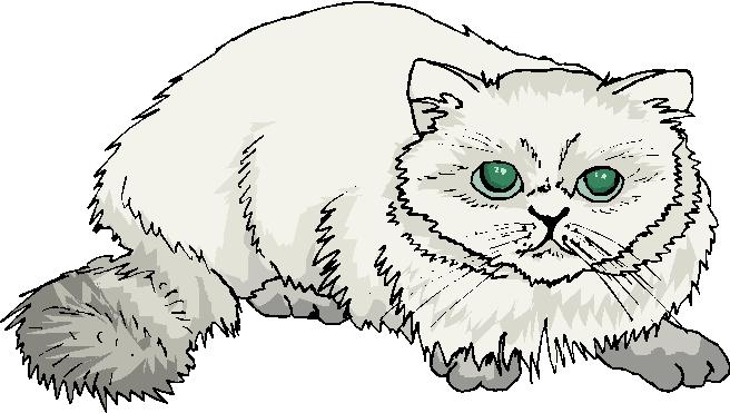 clipart fat cat - photo #33