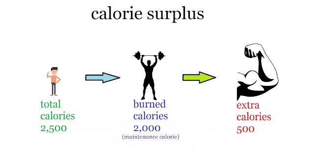 weight gaining foods