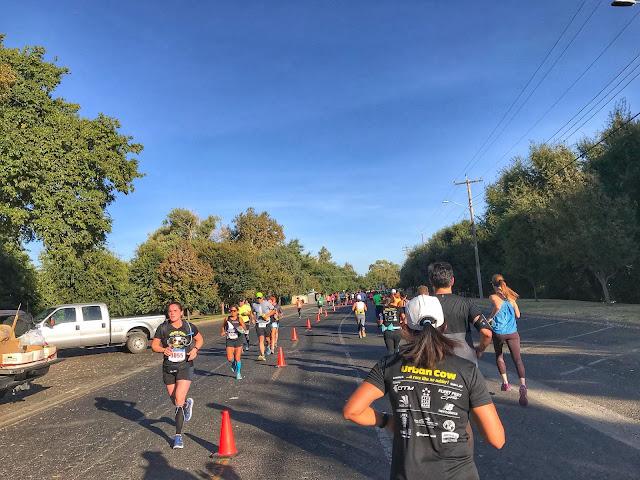 Urban Cow Half Marathon