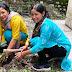 हरेला सप्ताह पर पोखरी महाविद्यालय में संपन्न हुआ स्वच्छता व वृक्षारोपण कार्यक्रम