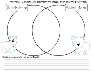 black bear polar bear venn diagram black bear electric fan wire diagram