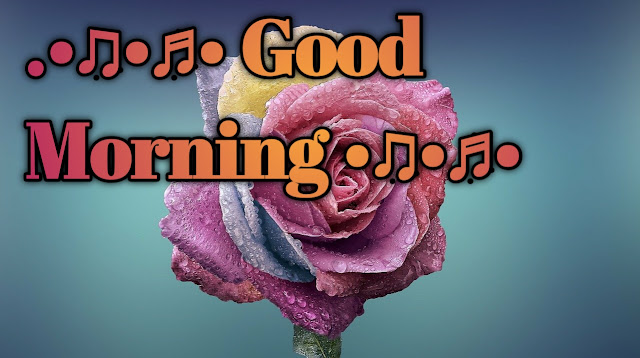 Romantic good morning images pics wallpaper free for a couple