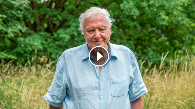 A Message From Sir David Attenborough A Perfect Planet BBC Earth