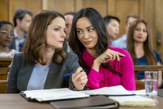 TV FILM REVIEW | Darrow and Darrow (2017) – The New Sleuths on Hallmark's Block. All *TEXT* © Rissi JC; review first appears on RissiWrites.com.