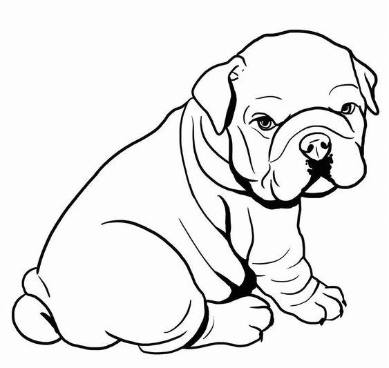 Tranh tô màu con chó Bull