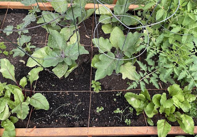 square foot gardening createwithmom