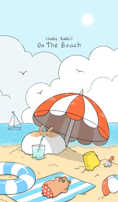 Chubby Rabbit-On the beach