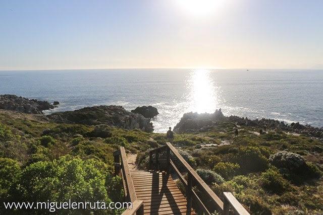 Mirador-ruta-ballenas-Sudáfrica