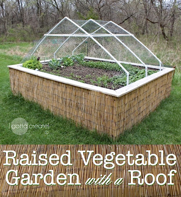 PVC Pipe and chicken wire make a roof for a raised garden bed. | Details at I Gotta Create!