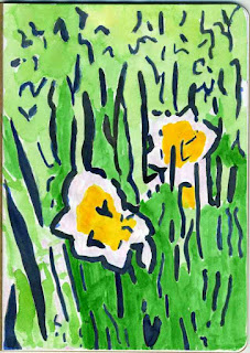 """Daffodils"" - Watercolor by Paul Sherman"