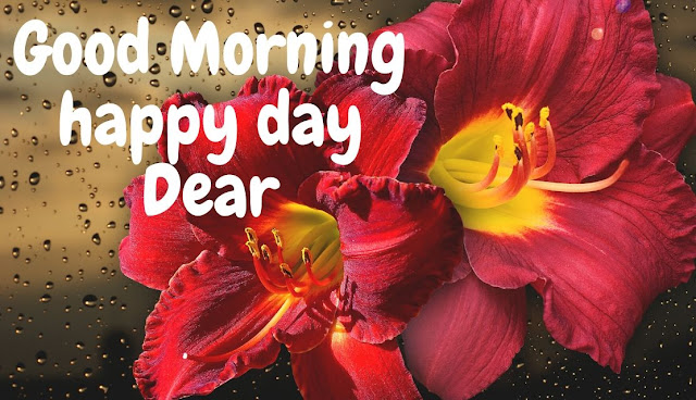 Beautiful Good Morning Rainy Day HD Image