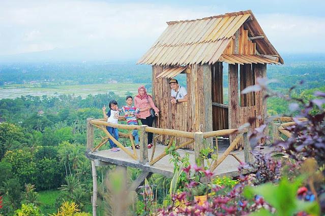 Lokasi Dan Tiket Masuk Bukit Bonsai Blitar Terbaru 2021