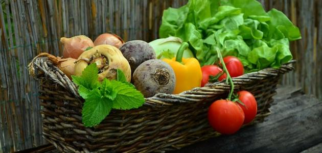 The best food for stomach ulcers