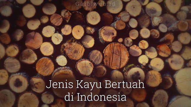 Jenis-jenis Kayu Bertuah di Indonesia