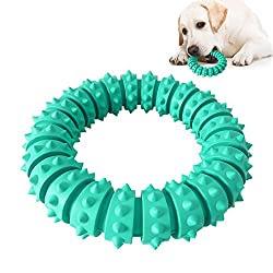 Hundespielzeug mit Hundefutter
