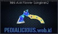 Mini Axe Flower Songkran2
