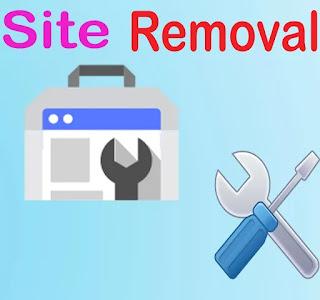 Remove Site from Search Console