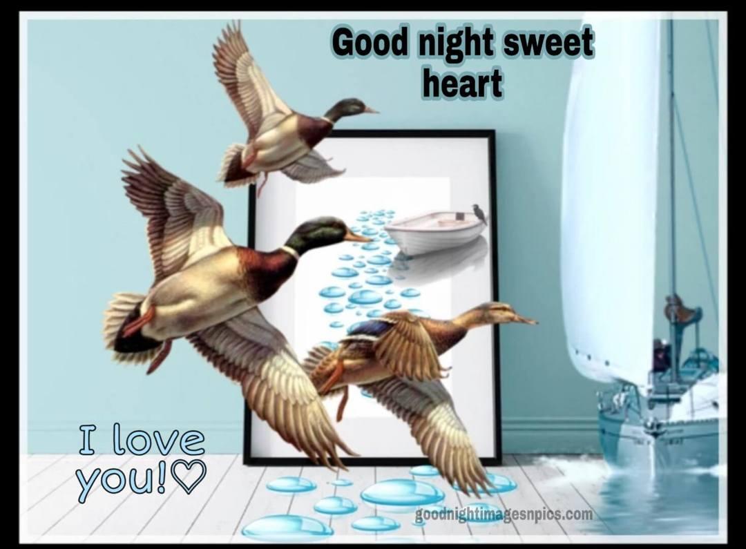 Good Night Cute Photos