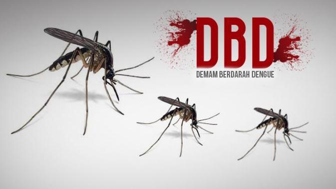 Penanggulangan Penyakit Demam Berdarah