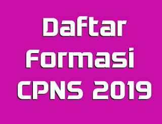 seperti apa daftar lengkap formasi CPNS 2019 di Indonesia