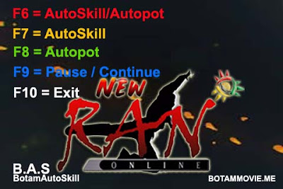 Auto Skill Ranonline