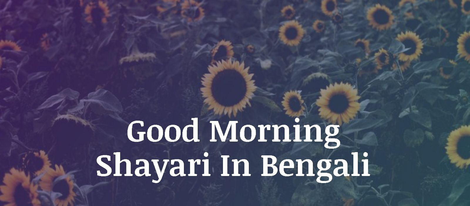Good Morning Shayari In Bengali
