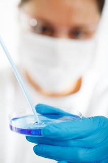 برمجة الخلايا الدهنية البيضاء