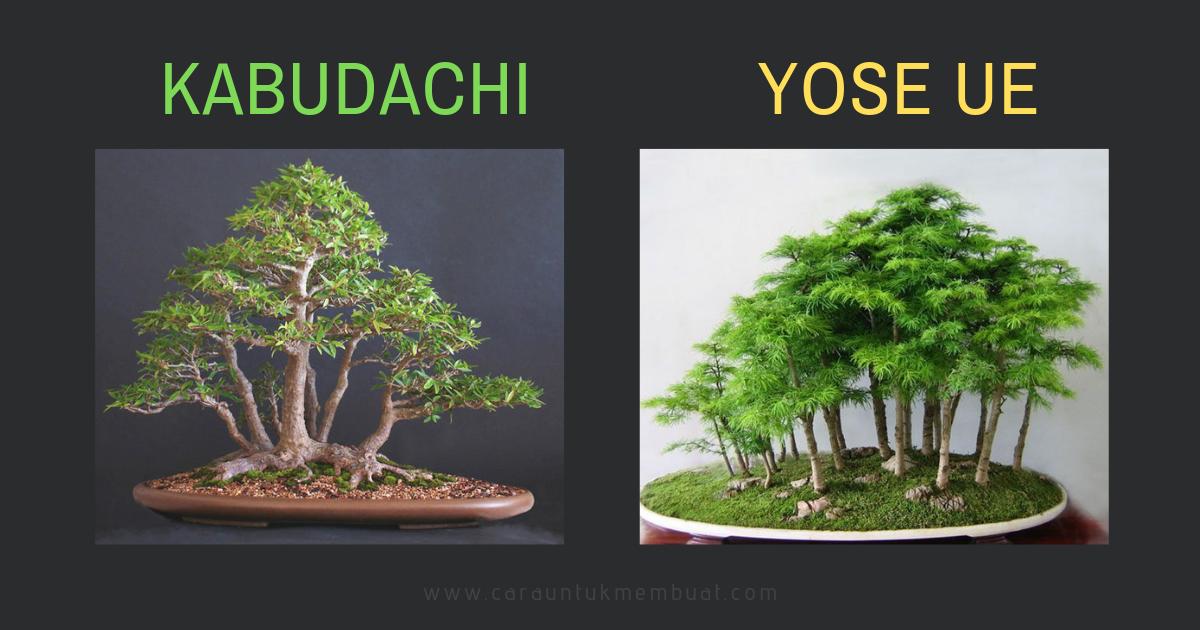 Perbedaan Kabudachi dan Yose Ue
