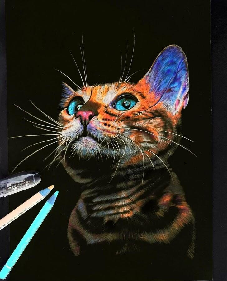 15-Cat-N-Réka-Gyányi-www-designstack-co