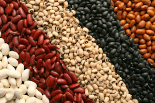 premenoupause merupakan keadaan yang seringkali menjadi persoalan bagi kaum wanita Kacang kacangan perlambat penuaan