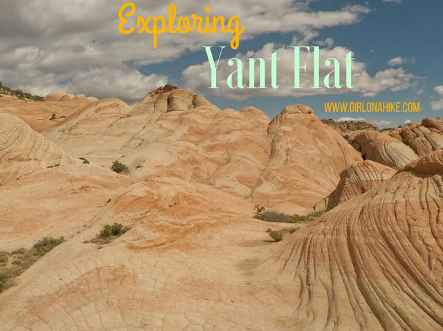 Yant Flat Cliffs, St. George,The BEST Hikes in St.George, Utah!