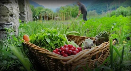 Σύλλογος Γεωπόνων Αργολίδας: Το μεγάλο στοίχημα, είναι η αγροτοδιατροφική κρίση