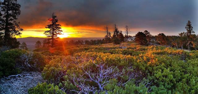 Golden Sunrise Bukit Sikunir