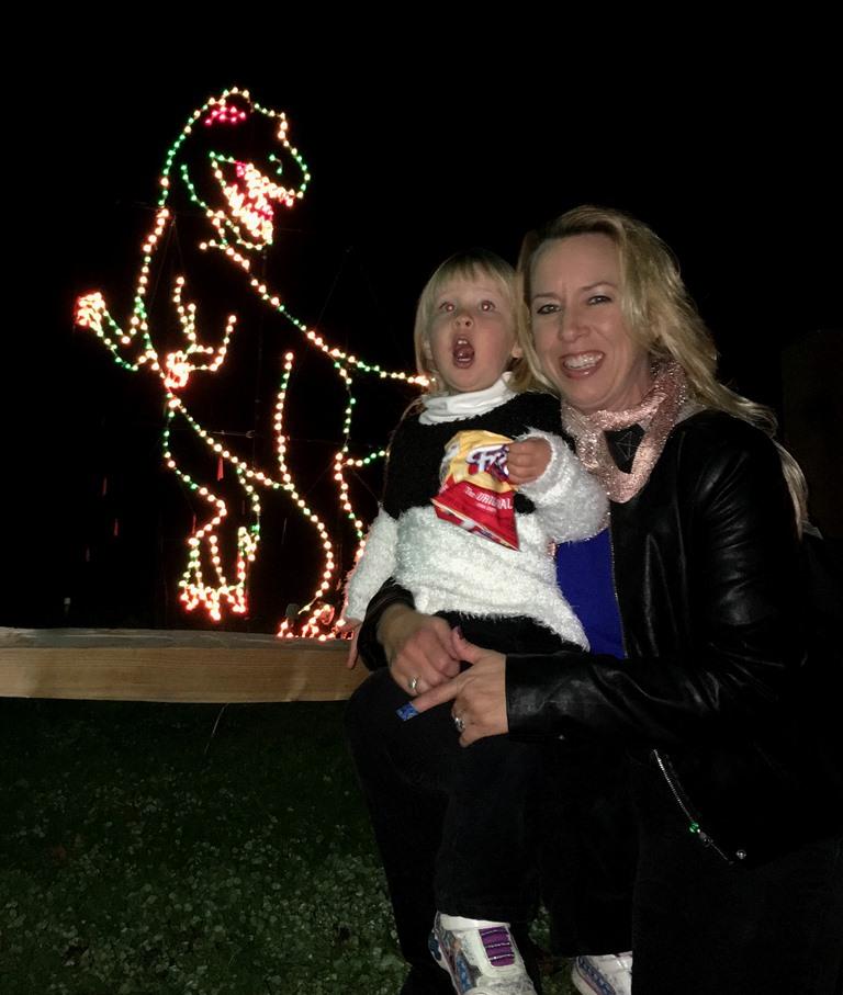 Christmas Lights Vasona Park: Earth Turns And Wind Burns