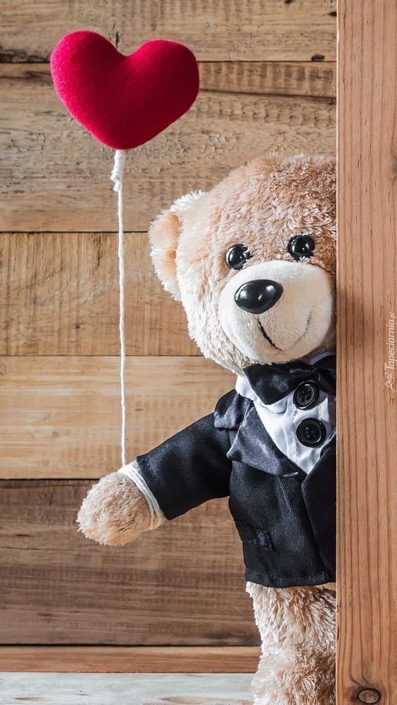 Sweet Images of Teddy Bear for Teddy Day Wishes With I Love You